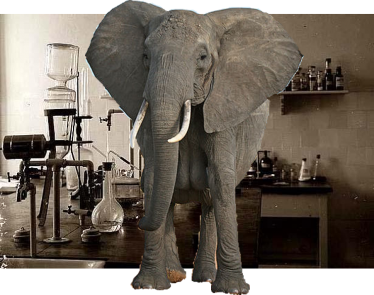 The Elephant in the Laboratory