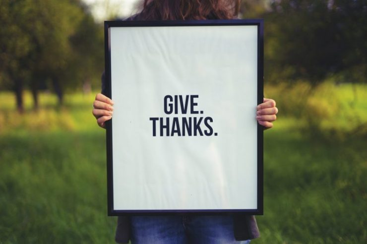 Cultivating Gratitude – Even Now