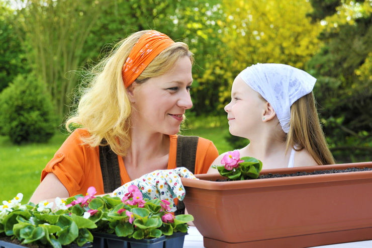 Spiritual Lessons from Gardening