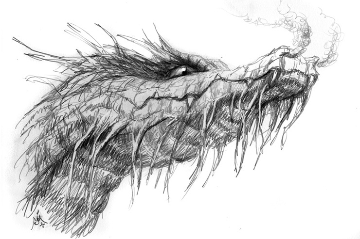 On Dragons
